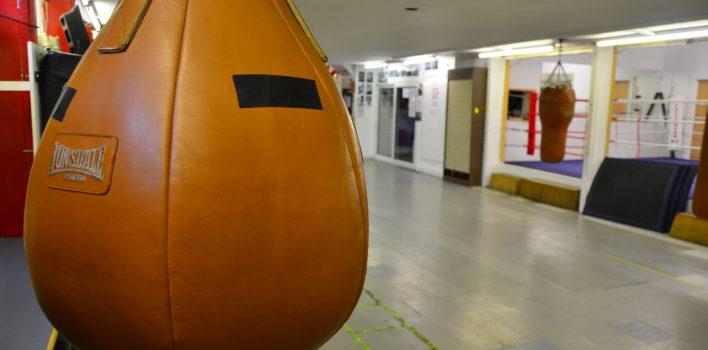 Islington Boxers Make History
